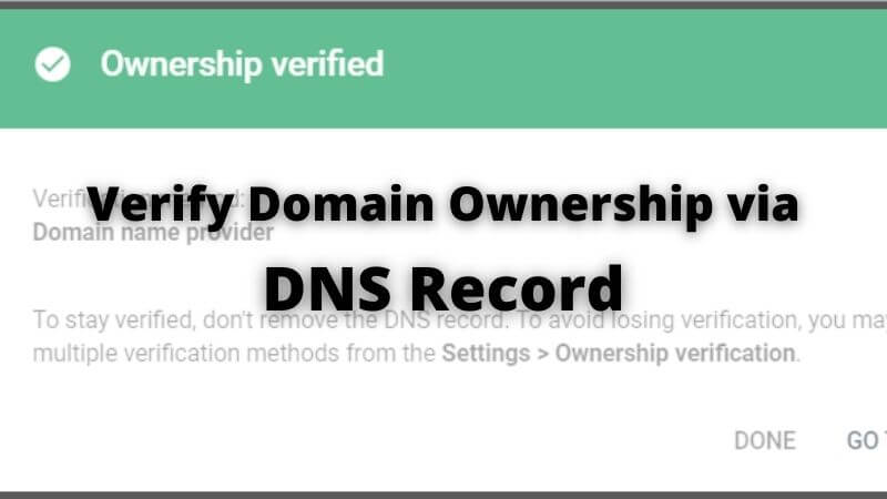 verify domain ownership via dns record